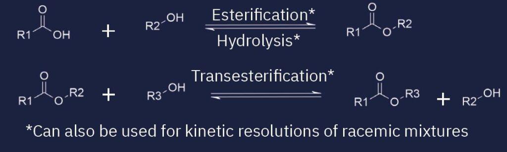 chemical-reaction-lipases-esterases.jpg