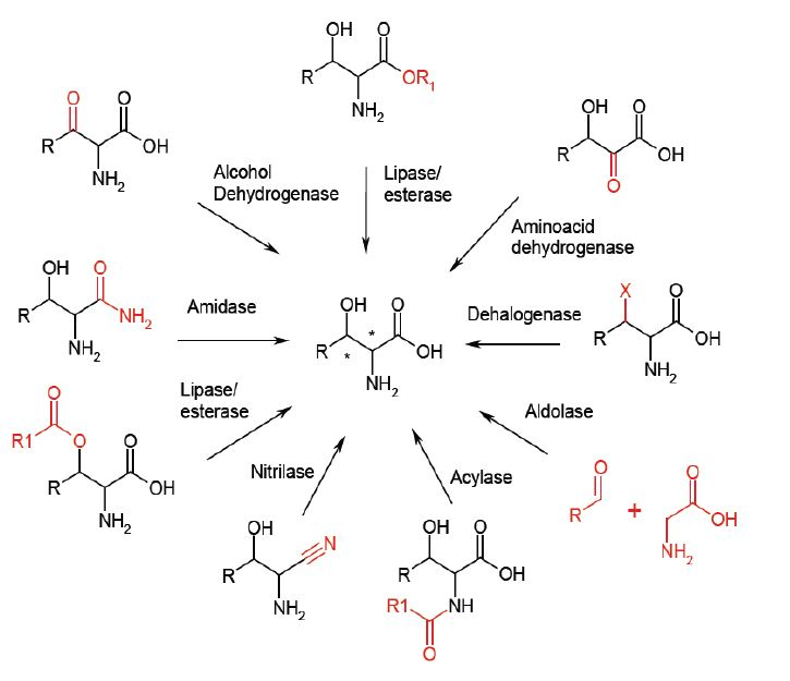 Optimization-of-synthesis-of-chiral-and-complex-agrochemicals